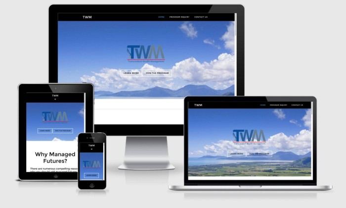 Parallax website design for TWM