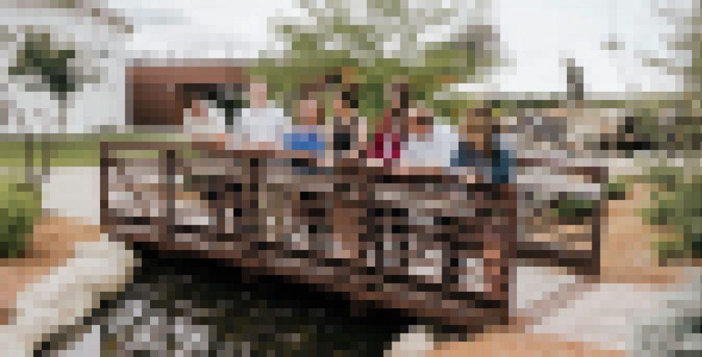 Image Optimization - Pixelated Example